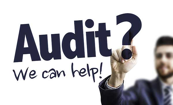 We Can Help with Tax Audits